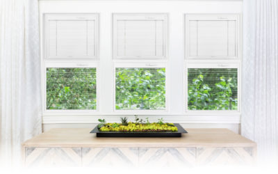 4 Features of Windows with Blinds Between the Glass