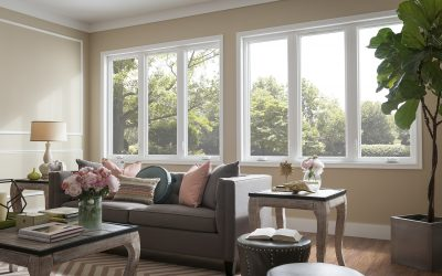 What Are the Best Kind of Windows for Northeast Florida?