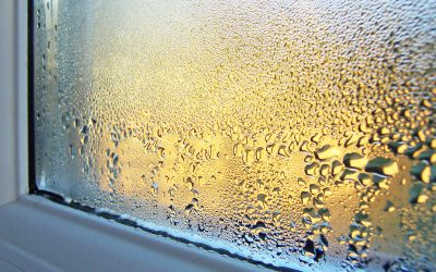 What Causes Condensation on Windows and How to Prevent It